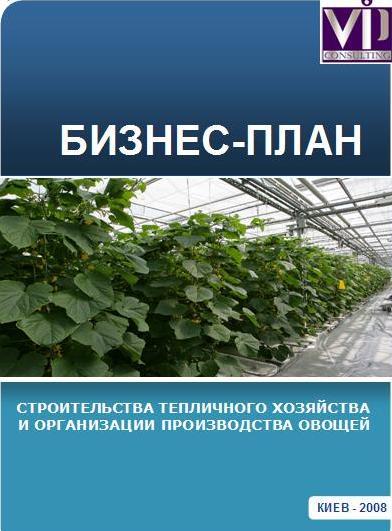 сечение, вид бизнес план хозяйства по выращиванию цветов